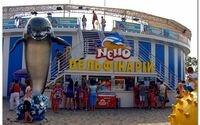 Дельфинарий «Немо» на курорте Бердянск